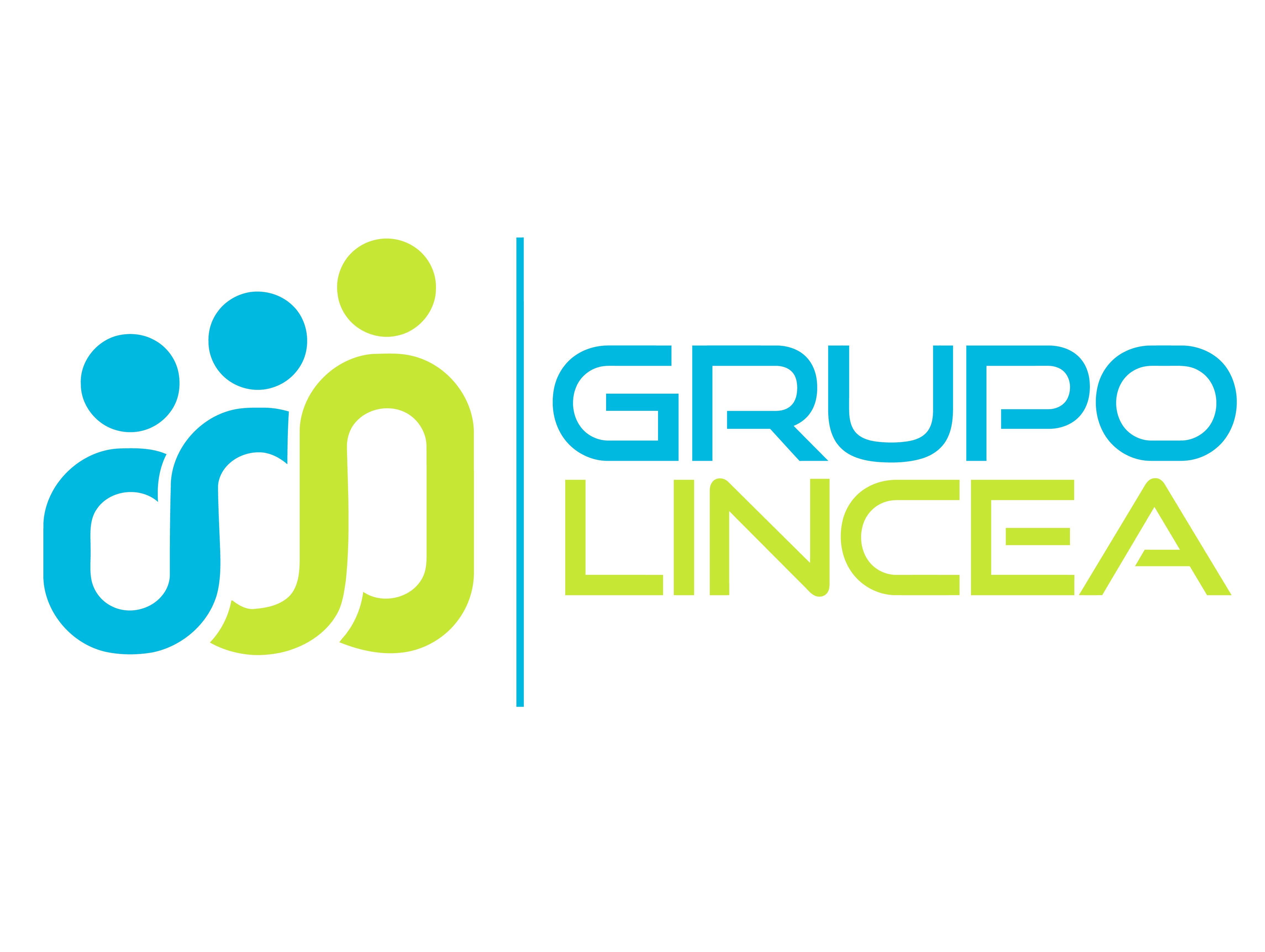 Grupo Lincea